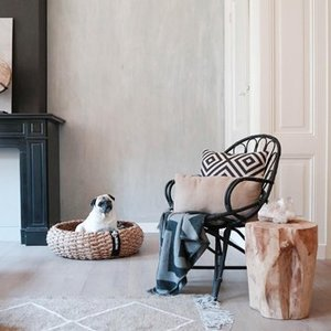 Huiskamer met schattige hondenmand van Kwispel en zo