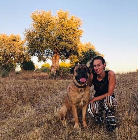 Grote hond met vrouw in veld