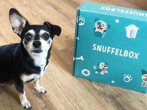Lola tijdesn de snuffelbox review