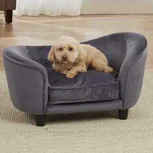 Grijze hondenbank met hond