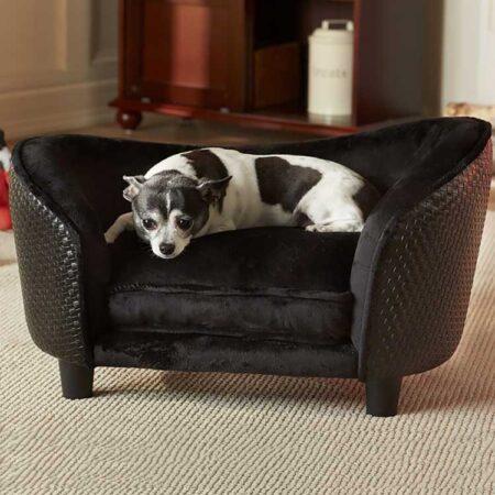 Zwarte hondenbank met hond