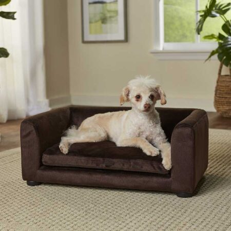 Bruine hondenbank met hond
