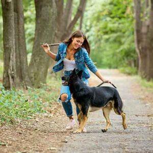 hond met vrouw in bos