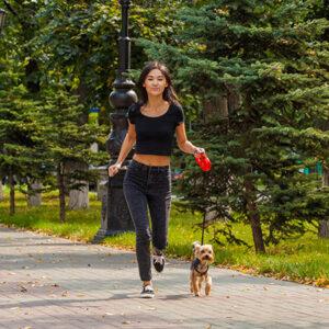 Uitgelichte afbeelding   Vrouw joggend met haar hond