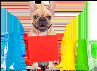 Hondje met winkeltasje in zijn mond
